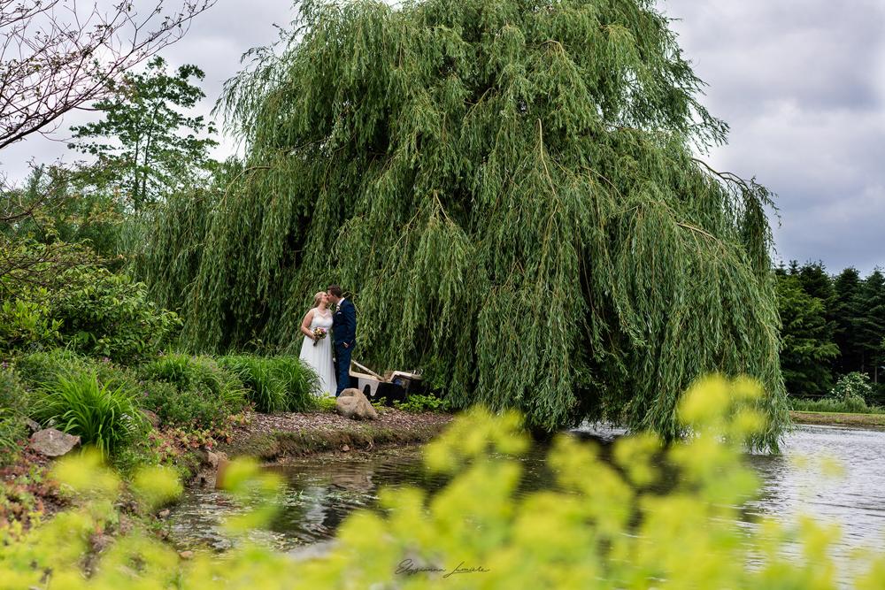Hochzeitsfotos am See in Visbek mit Trauerweide