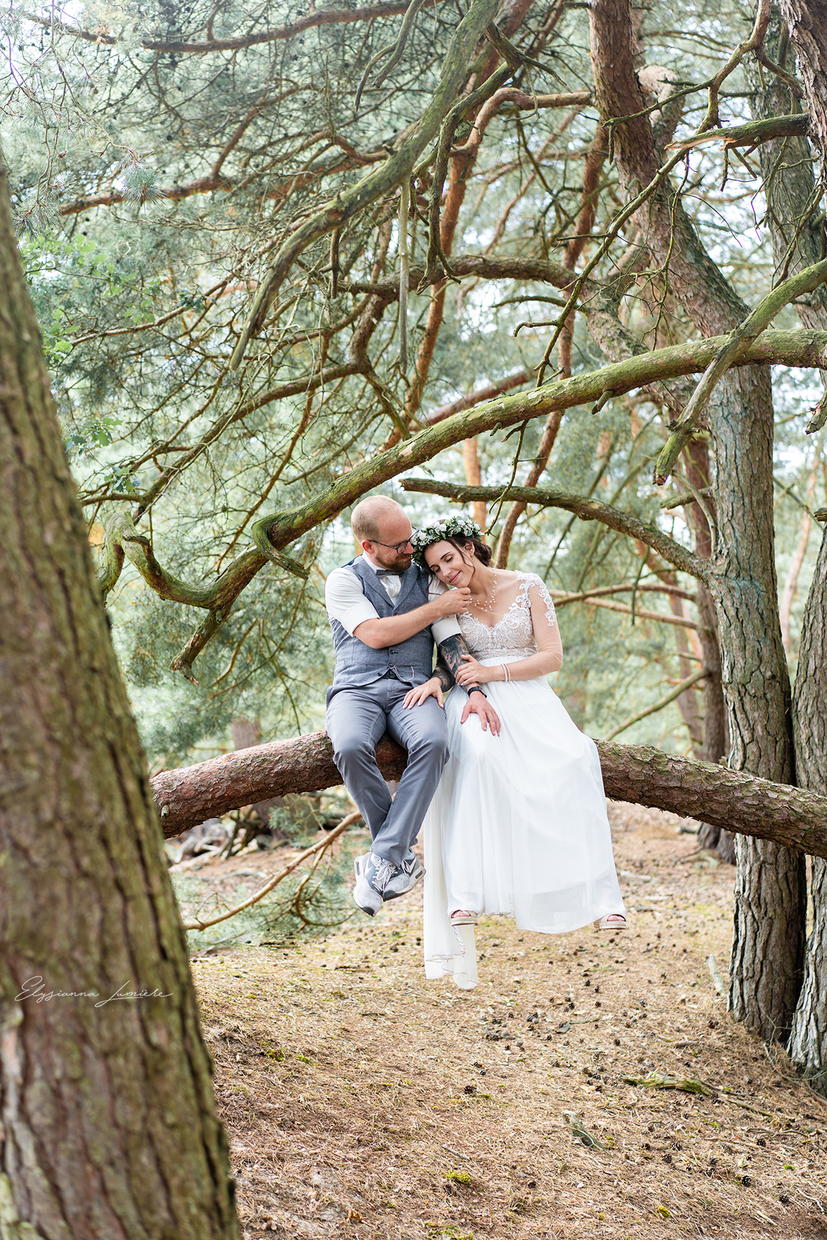 Fotoshooting Hochzeitsfotos auf einem Baumstamm in der Höhe