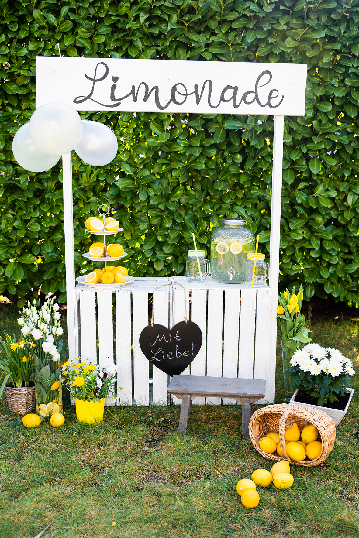 Fotoshooting mit do it Yourself Limonadenstand Fotografin Bremen Kindershootings Babyfotograf