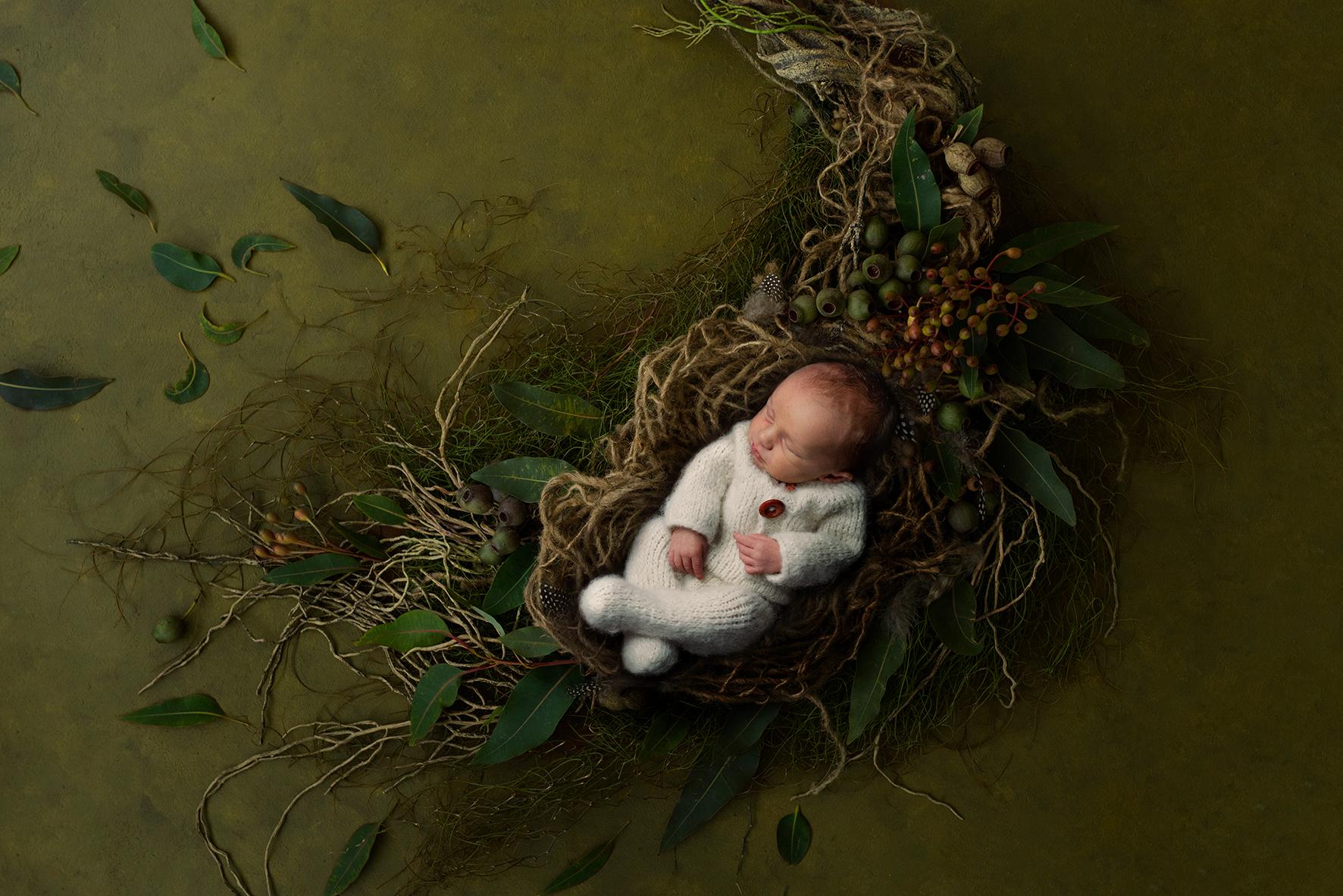 Neugeborenenbilder in Bremen Fotograf Oldenburg Hochzeitsfotos
