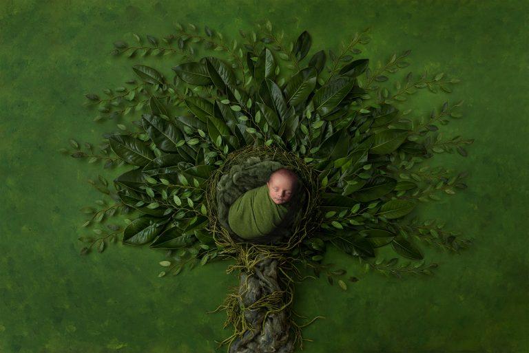 Neugeborenenshooting im Fotostudio Bremen