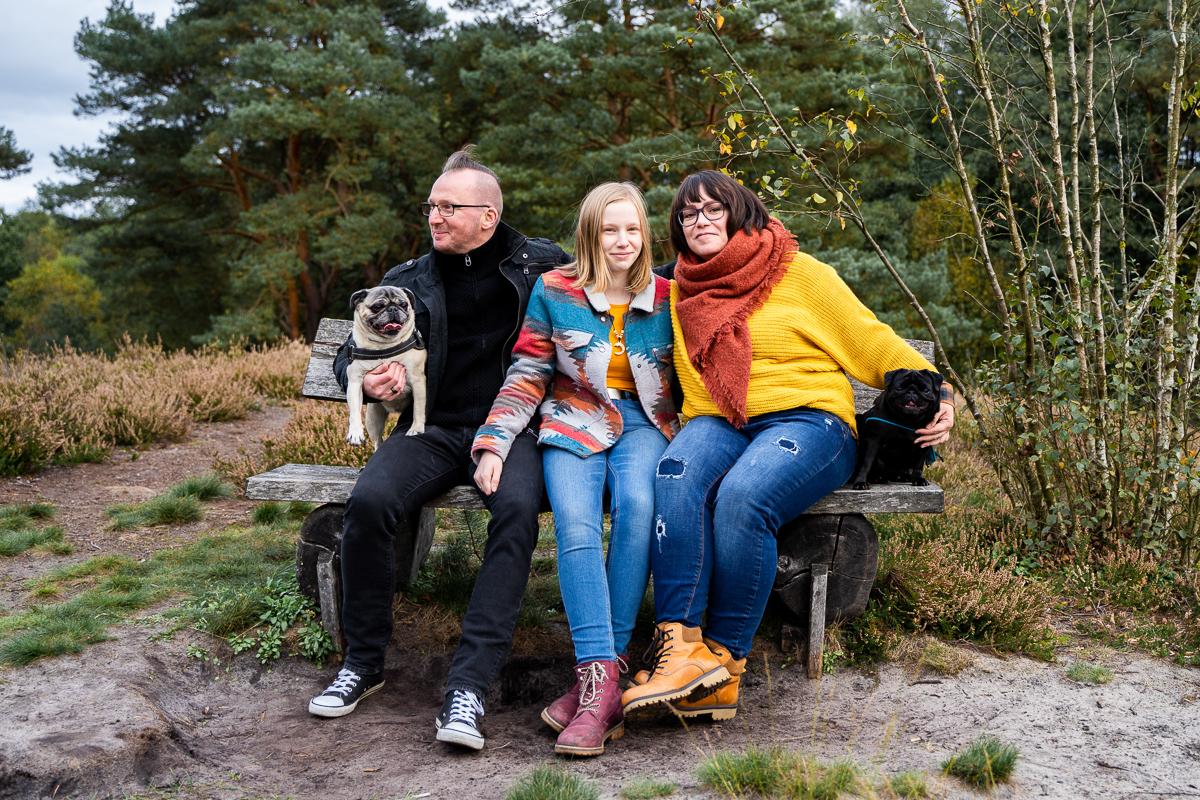 Familienfotos auf einer alten Bank mit Hunden Fotoshooting Bremen