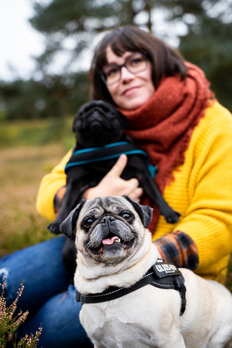 Fotoshooting mit Hunden Mops und Frauchen in der Heide Fotografin bremen