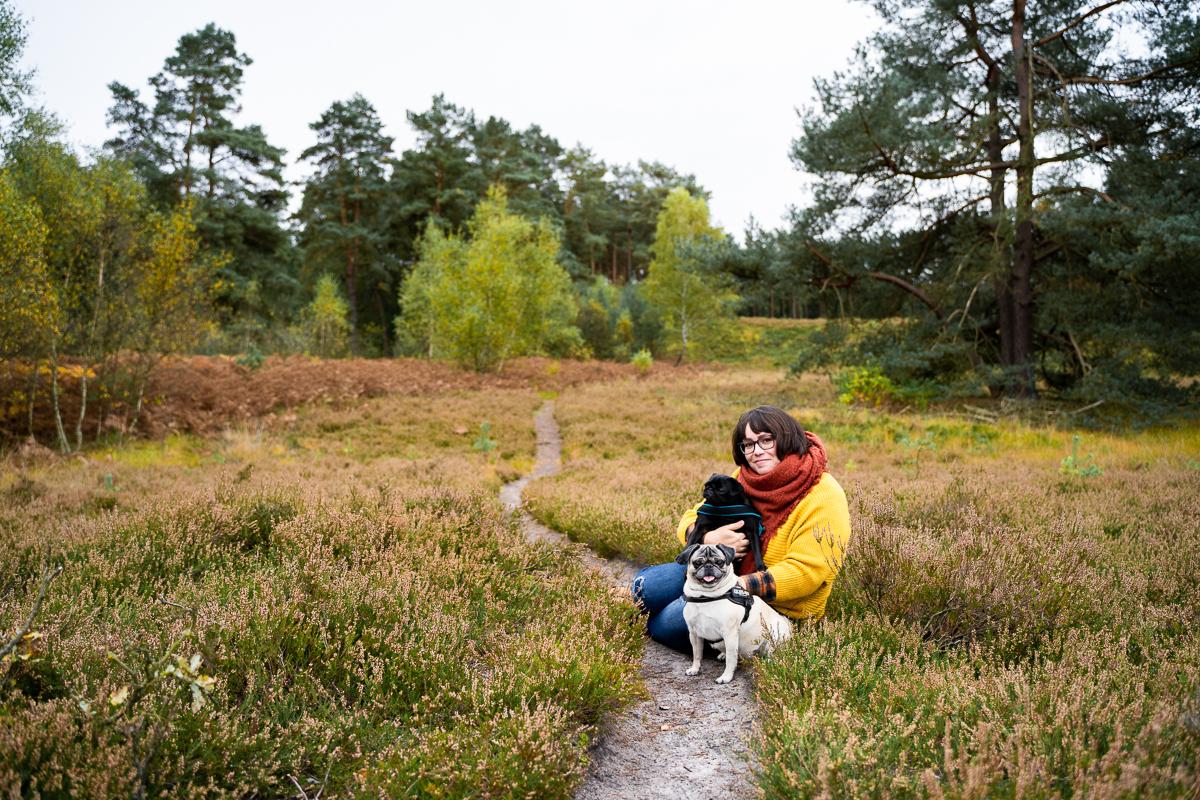 Fotoshooting mit Hunden in der Heide Familienfotografin Bremen