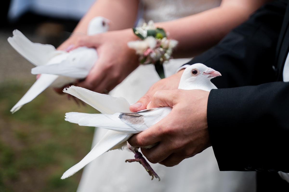 Tauben fliegen lassen Hochzeitsfeier Bremen