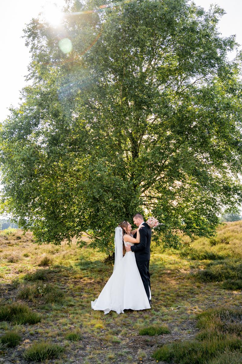 Brautpaar unter einem Baum in der Heidelandschaft Hochzeitsfotografin Bremen
